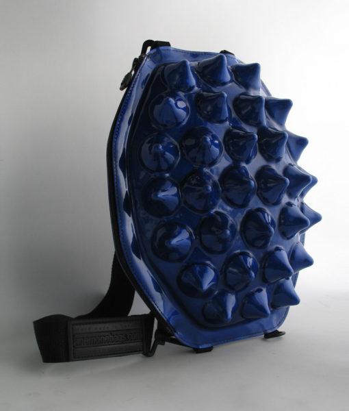anemone bleu 3